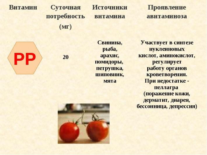 sytochnaya-potrebnost-vitamina-pp