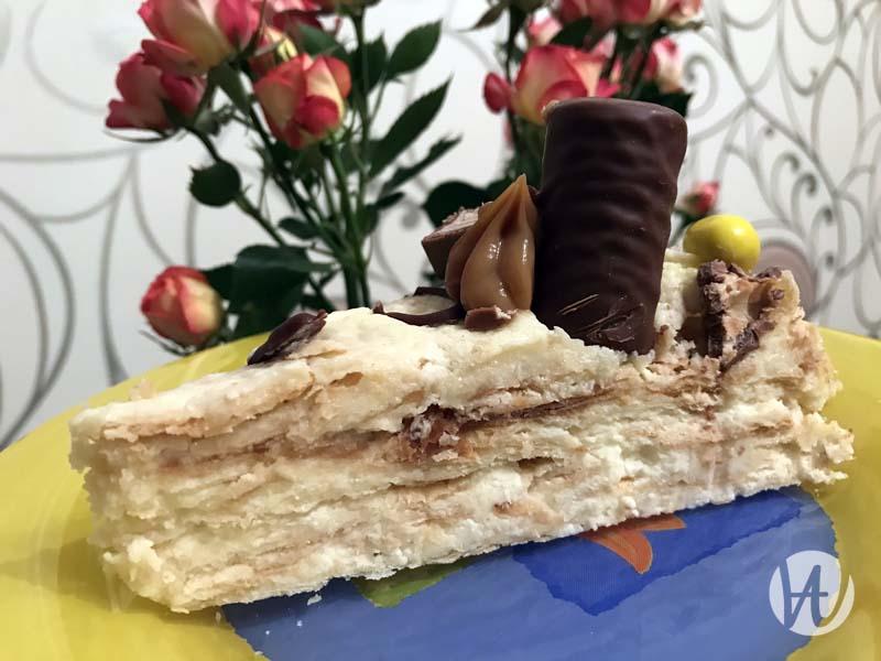 35-tort-v-razreze